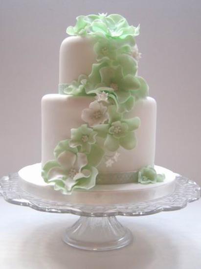Cakes Winchester Hampshire
