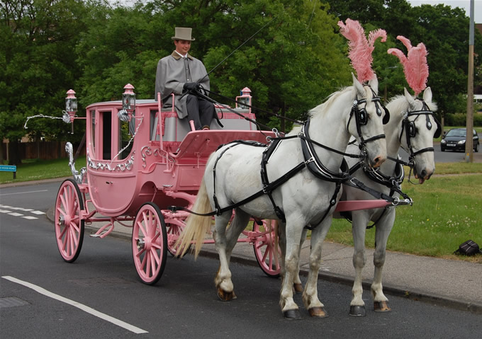 Cooks Carriages Wedding Transport Based In Essex