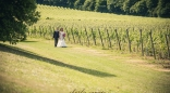 Denbies Wine Estate - Venue - Surrey
