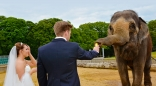 The Safari Lodge at Woburn Safari Park - Venue - Buckinghamshire