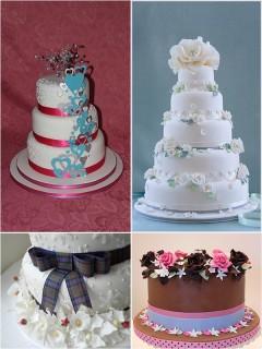 cakesplug1.jpg